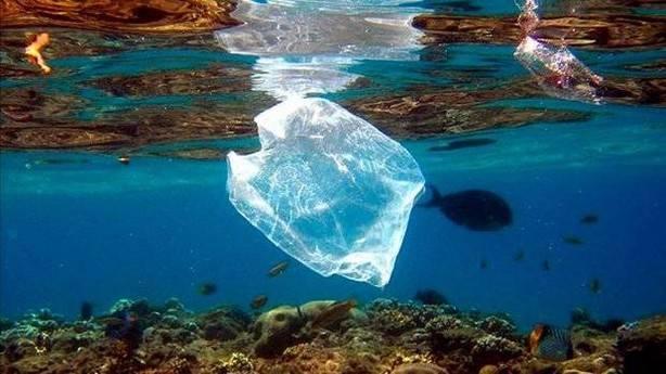 Mediterráneo: el 96% de las muestras de basura marina en la superficie son plásticos